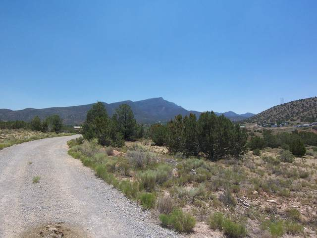 Camino Tres Ritos, Placitas, NM 87043 (MLS #946981) :: Campbell & Campbell Real Estate Services
