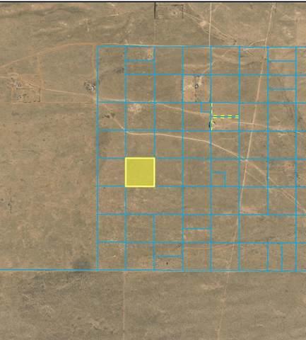 Off Powers Way (M#14) SW, Albuquerque, NM 87121 (MLS #948781) :: Keller Williams Realty