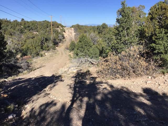 Pinon Park Estates, Sandia Park, NM 87047 (MLS #949226) :: The Bigelow Team / Red Fox Realty