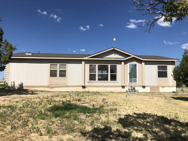 3198 Highway 60, Quemado, NM 87829 (MLS #949230) :: Campbell & Campbell Real Estate Services