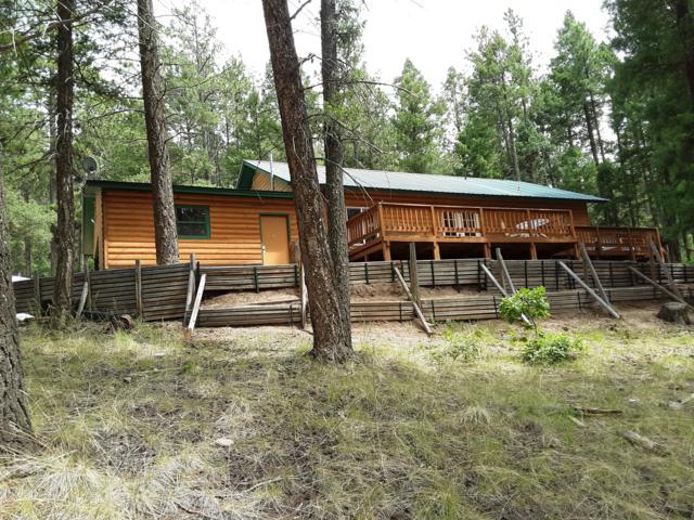 12 Cerro Pelado Trail, Jemez Springs, NM 87025 (MLS #949770) :: Silesha & Company