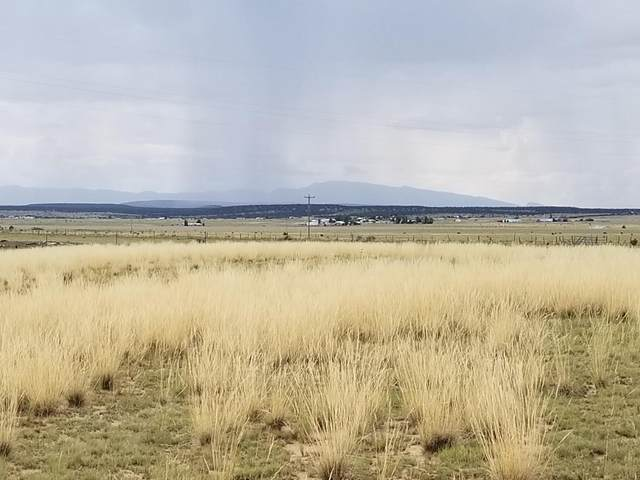 196 Mcnabb Road, Moriarty, NM 87035 (MLS #950242) :: The Buchman Group
