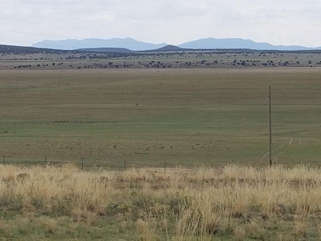 25 W Rabbit Run Court, Moriarty, NM 87035 (MLS #950423) :: The Bigelow Team / Red Fox Realty