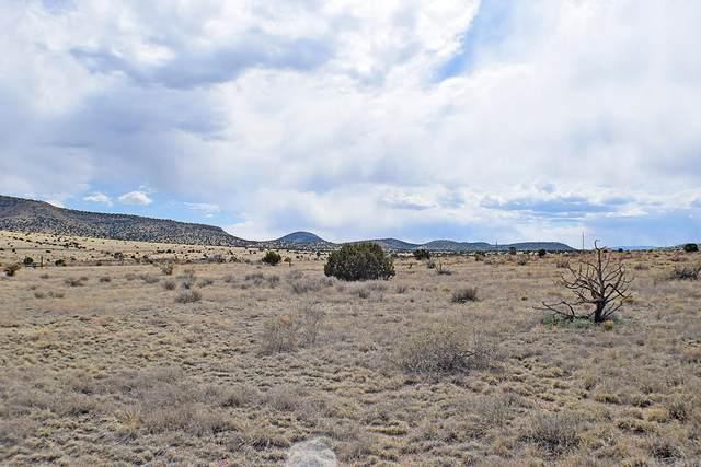 Lot 3 Golden West Loop, Magdalena, NM 87825 (MLS #958915) :: The Buchman Group