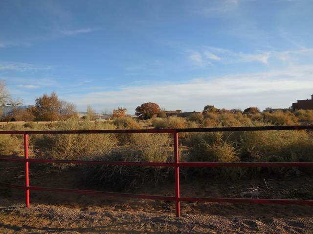 102 Keira Court, Corrales, NM 87048 (MLS #959284) :: Campbell & Campbell Real Estate Services