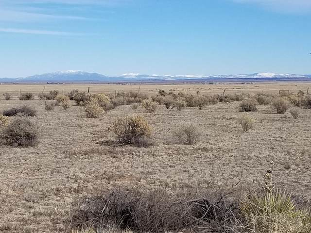 42 Shiloh Road, Moriarty, NM 87035 (MLS #959735) :: Berkshire Hathaway HomeServices Santa Fe Real Estate