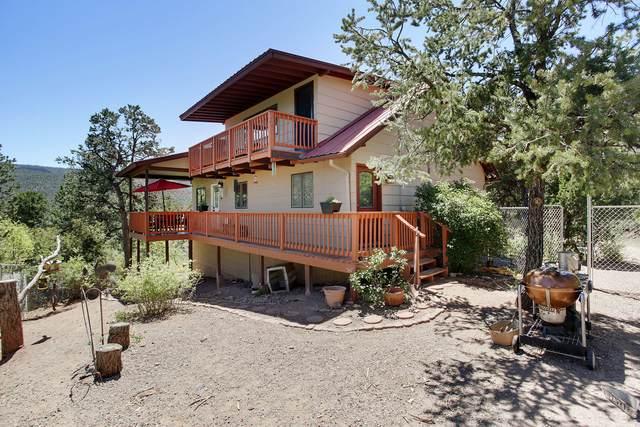 157 Cebolla Loop, Jemez Springs, NM 87025 (MLS #959965) :: The Buchman Group