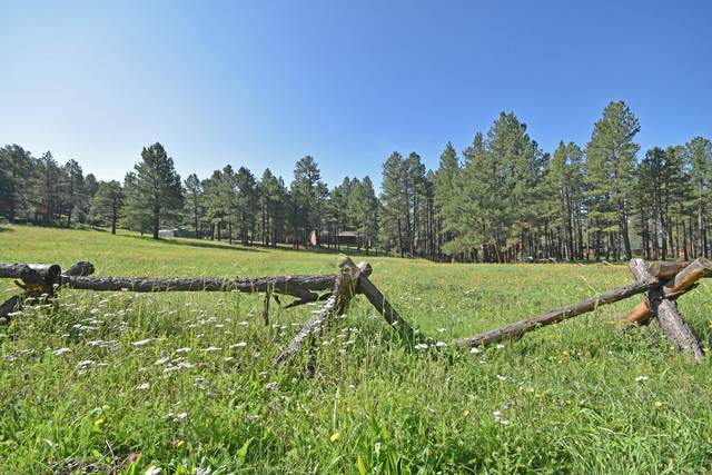 Elk Trail, Jemez Springs, NM 87025 (MLS #963292) :: Campbell & Campbell Real Estate Services