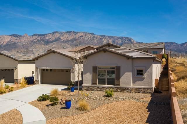 8100 Ronan Court, Albuquerque, NM 87122 (MLS #964680) :: Sandi Pressley Team