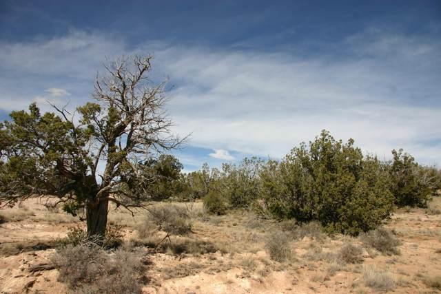 3 San Mateo Trail Lot 46 Trail, Mountainair, NM 87036 (MLS #965521) :: The Bigelow Team / Red Fox Realty