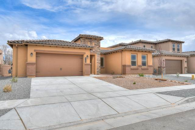 6300 Buckthorn Court NW, Albuquerque, NM 87120 (MLS #965842) :: The Buchman Group
