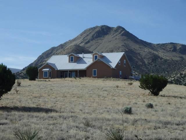 1100 10th Street, Magdalena, NM 87825 (MLS #967822) :: The Buchman Group
