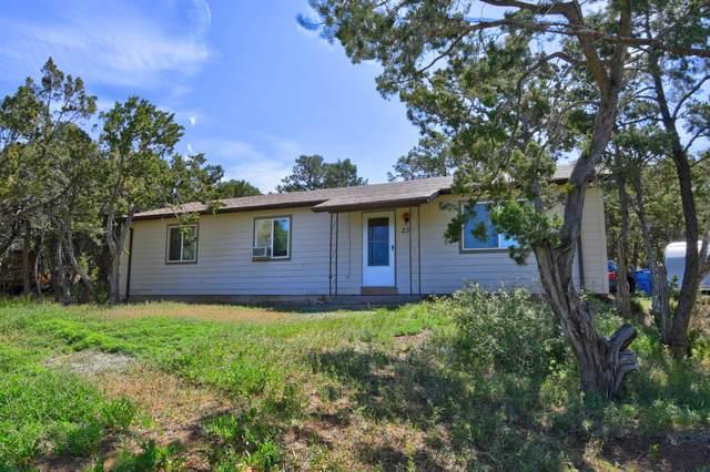 23 Jennifer Drive, Sandia Park, NM 87047 (MLS #968130) :: Sandi Pressley Team