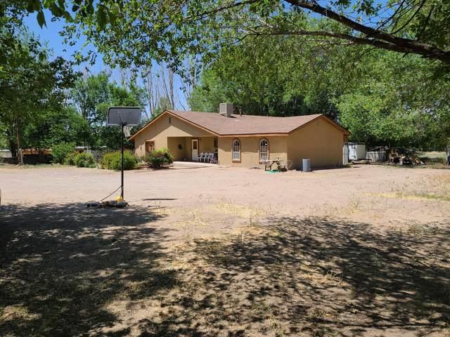 763 State Hwy 22, Pena Blanca, NM 87041 (MLS #969133) :: The Buchman Group