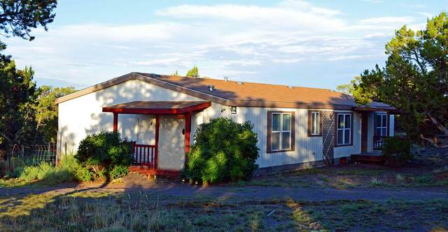151 Ridge Top (Lot 75) Circle, Pie Town, NM 87827 (MLS #969245) :: Campbell & Campbell Real Estate Services