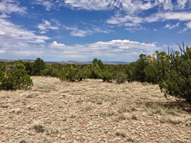 44 Camino Del Sueno, Magdalena, NM 87825 (MLS #969584) :: The Buchman Group