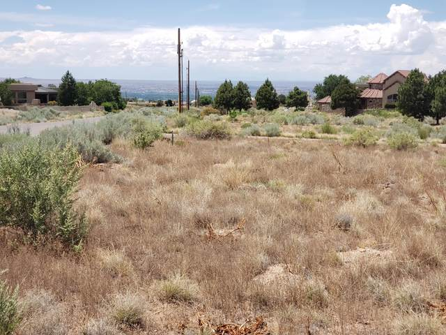 9301 Glendale Avenue NE, Albuquerque, NM 87122 (MLS #969618) :: The Buchman Group