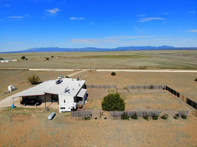 102 S Blue Grass Road, Estancia, NM 87016 (MLS #969678) :: The Buchman Group