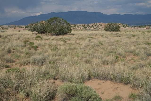 Volcano Cliffs Subd., Albuquerque, NM 87120 (MLS #969808) :: The Bigelow Team / Red Fox Realty