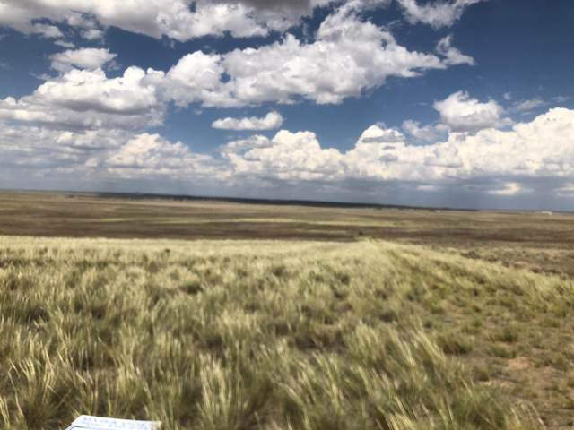 Palomino Drive, Moriarty, NM 87035 (MLS #969833) :: The Bigelow Team / Red Fox Realty