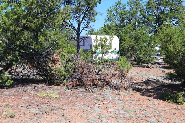 43 Papoose Place, Datil, NM 87821 (MLS #969852) :: The Buchman Group