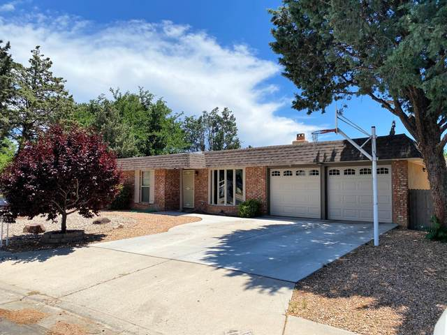 4801 Brookwood Street NE, Albuquerque, NM 87109 (MLS #969867) :: The Buchman Group