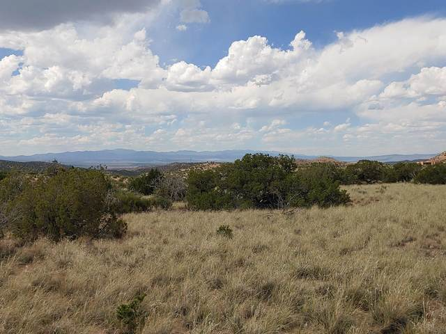 Wild Marigold, Placitas, NM 87043 (MLS #969892) :: Campbell & Campbell Real Estate Services