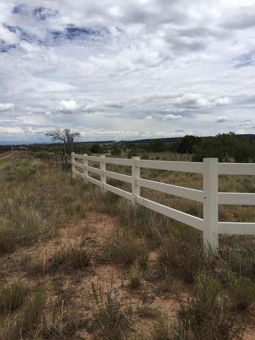 Sedillo Rd., Edgewood, NM 87015 (MLS #970000) :: The Bigelow Team / Red Fox Realty