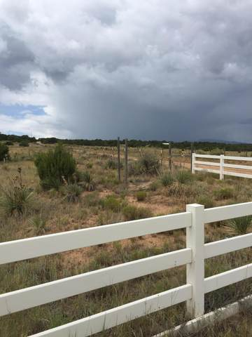 Sedillo Road, Edgewood, NM 87015 (MLS #970001) :: The Bigelow Team / Red Fox Realty