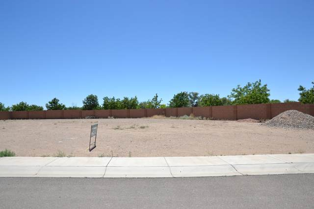 10441 Amara Vista Court NE, Albuquerque, NM 87113 (MLS #970043) :: The Buchman Group
