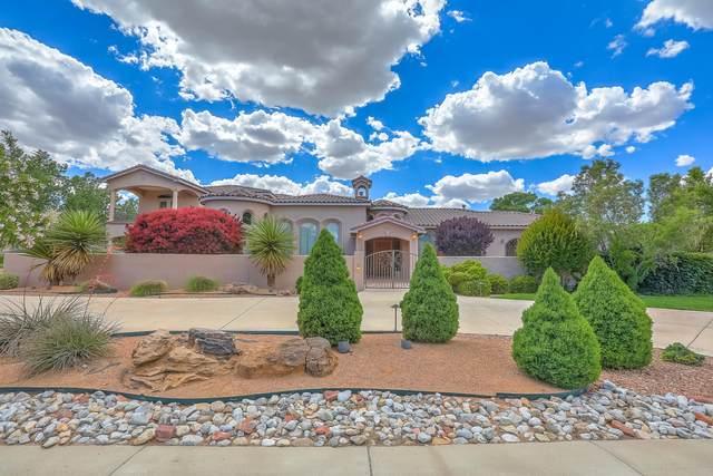 9415 Black Farm Lane NW, Albuquerque, NM 87114 (MLS #970089) :: Campbell & Campbell Real Estate Services