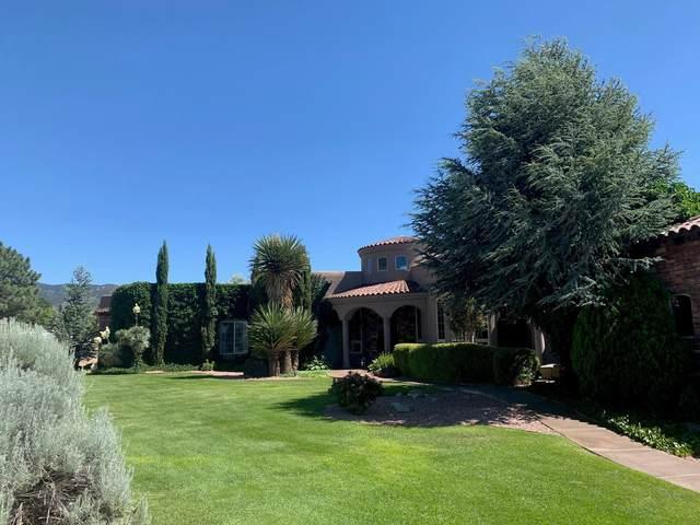 11804 Pino Avenue NE, Albuquerque, NM 87122 (MLS #970100) :: Campbell & Campbell Real Estate Services