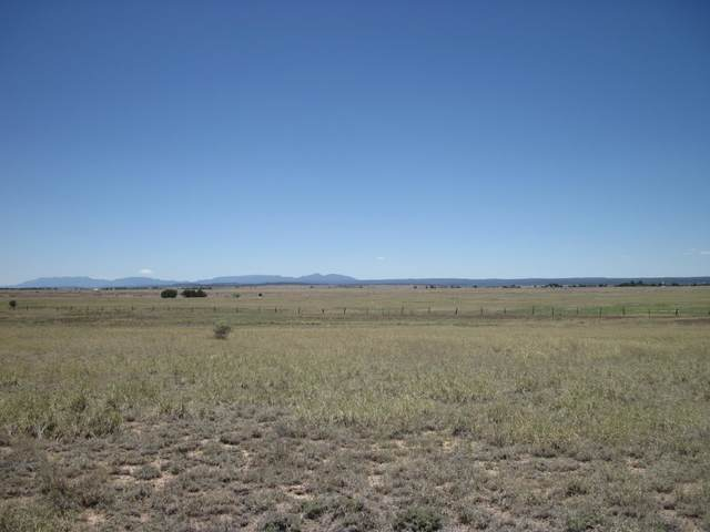 113 Echo Ridge Road, Moriarty, NM 87035 (MLS #970161) :: Berkshire Hathaway HomeServices Santa Fe Real Estate