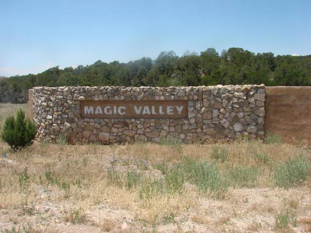 4 Joy Court, Sandia Park, NM 87047 (MLS #970183) :: The Bigelow Team / Red Fox Realty