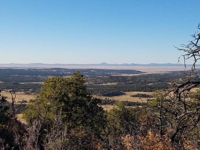 U3 Lot 7 Wild Horse Ranch, Pie Town, NM 87827 (MLS #970209) :: The Bigelow Team / Red Fox Realty