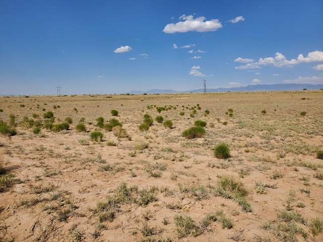 Harrison Rd, Belen, NM 87002 (MLS #970239) :: Campbell & Campbell Real Estate Services