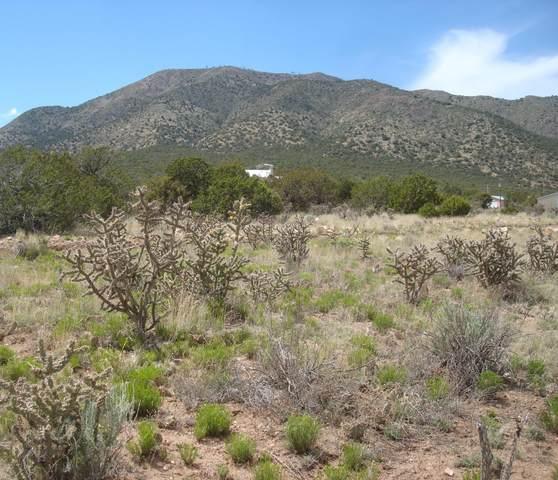 16 W Skyview Road, Edgewood, NM 87015 (MLS #970252) :: Berkshire Hathaway HomeServices Santa Fe Real Estate