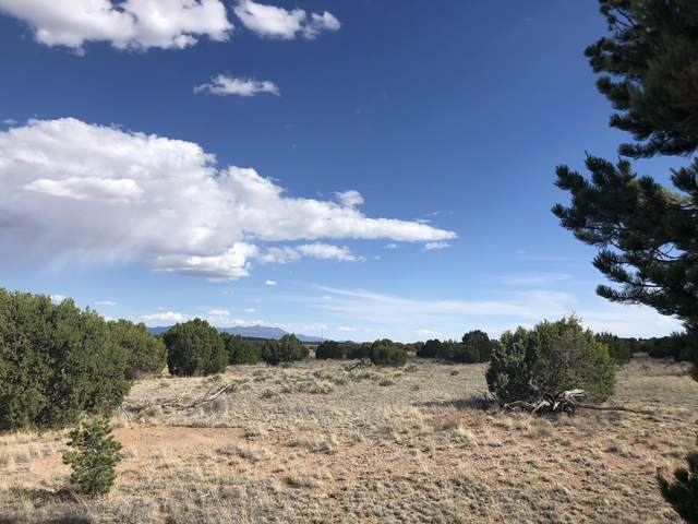 Lot 185 Pinon Springs Ranch, Magdalena, NM 87825 (MLS #970373) :: Keller Williams Realty