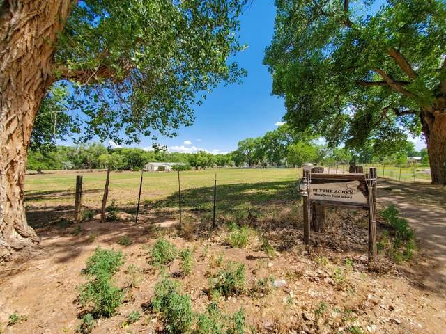 Blythe Road, Los Lunas, NM 87031 (MLS #970374) :: Berkshire Hathaway HomeServices Santa Fe Real Estate