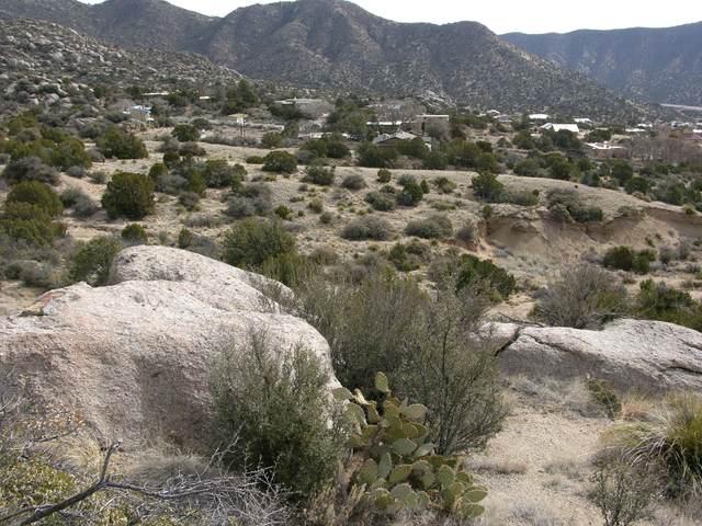 Matisse Road, Albuquerque, NM 87123 (MLS #970464) :: Sandi Pressley Team