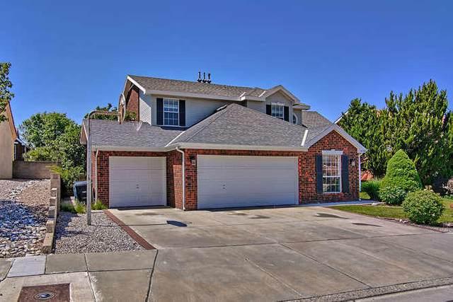 8700 Hampton Avenue NE, Albuquerque, NM 87122 (MLS #970506) :: The Buchman Group