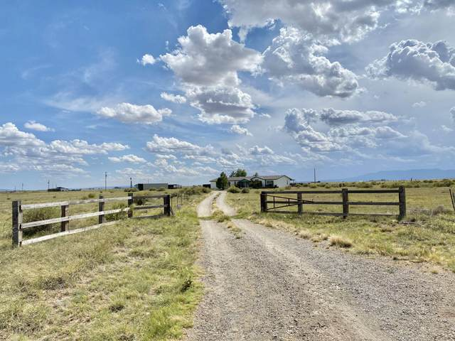 44 Alpaca Road, Estancia, NM 87016 (MLS #970542) :: The Buchman Group