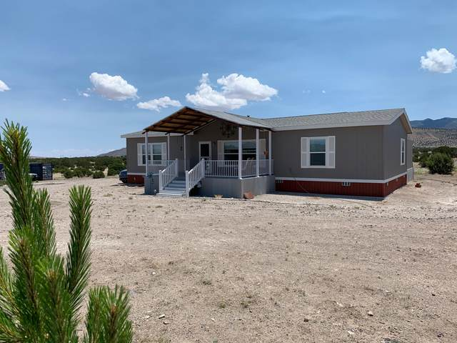 74 Longhorn Road, Magdalena, NM 87825 (MLS #970548) :: Berkshire Hathaway HomeServices Santa Fe Real Estate