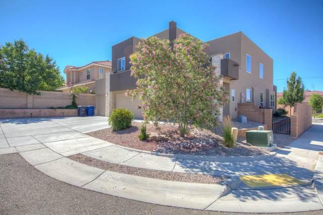 8900 Aleesa Court NE, Albuquerque, NM 87113 (MLS #970656) :: The Buchman Group