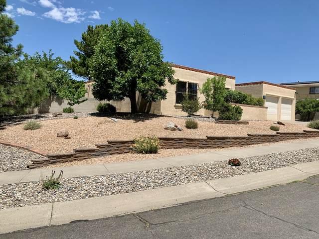 5301 Camino Sandia NE, Albuquerque, NM 87111 (MLS #971540) :: The Bigelow Team / Red Fox Realty