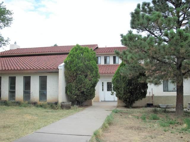 18 Mccall Loop, Edgewood, NM 87015 (MLS #971623) :: Berkshire Hathaway HomeServices Santa Fe Real Estate