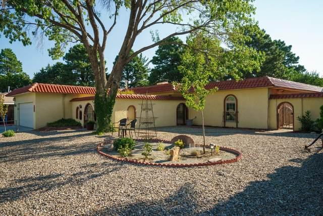 1040 Santa Ana Avenue SE, Albuquerque, NM 87123 (MLS #973151) :: Berkshire Hathaway HomeServices Santa Fe Real Estate