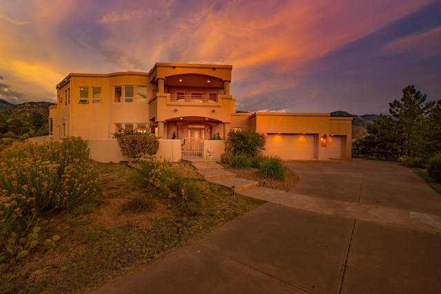 13504 Desert Zinnia Court NE, Albuquerque, NM 87111 (MLS #977050) :: Sandi Pressley Team