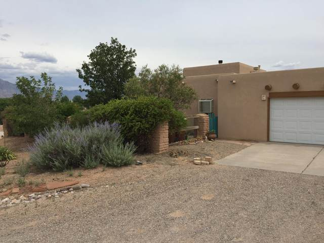 160 Coyote Run, Corrales, NM 87048 (MLS #981006) :: The Bigelow Team / Red Fox Realty