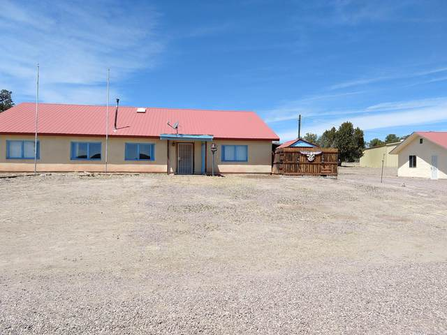 143 Navajo Way, Datil, NM 87821 (MLS #982320) :: Campbell & Campbell Real Estate Services